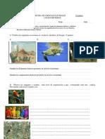 Prueba Quinto Ecosistemas 1
