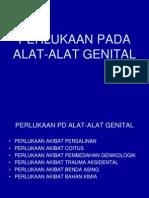 Perlukaan Pada Alat-Alat Genital Slide