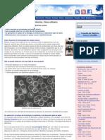 Microscopio de campo oscuro. Definición. Cómo utilizarlo _ SaludBio.pdf