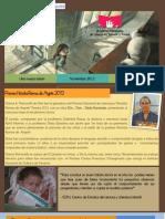 Boletín Noviembre 2012