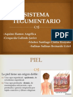 sistemategumentario-111112075625-phpapp01