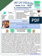 Boletin Rotary N°21 Noviembre-Diciembre 2012