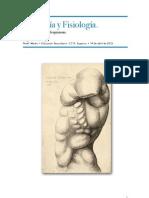 Anatomia y Fisiologia Respiratorio