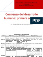 2_comienzo Del Desarrollo Humano_ Primera Semana