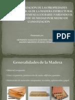 Sustentacion Algarrobo