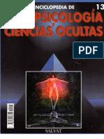 PARAPSICOLOGÍA Y CIENCIAS OCULTAS 13