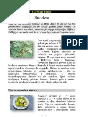 List magazin smokvin Smokvin List
