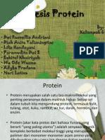 Kelompok 6 (Biosintesis Protein)