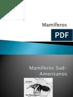 mamiferos-Ecuador