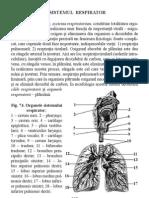 2.Sistemul Respirator