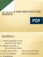 Kelompok 4 (Metabolisme Asam Amino)