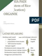 SRI Organik