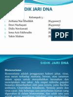 SIDIK JARI DNA.ppt