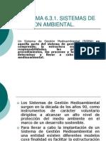 6.3.1 El Sistema de Gestion Ambiental