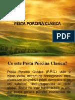 scurta prezentare  ppt. pesta porcina clasica