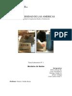 Informe 1 - Laboratorio M.C.