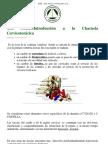 Charnela cervicotorácica