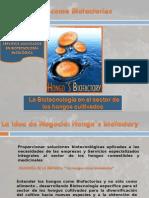 3-soluciones_biotecnologicashongos