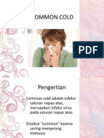 Common Cold Ppt