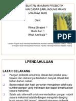 Bahan Seminar Palembang
