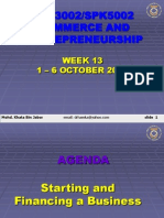 SPE3002 Entrerpeneurship - Financing and Starting a Business