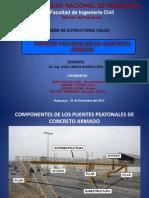 Puentes Peatonales de Concreto Armado