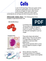 Higher Summary Notes - Cells