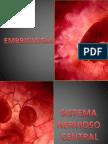 Embriología|