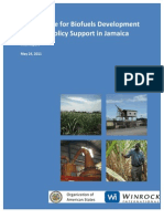 OAS, Assistance for Biofuels Development and Policy Support in Jamaica, 5-2011