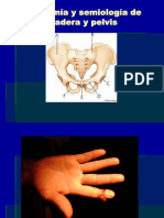 Anatomía y semiología de cadera y pelvis1