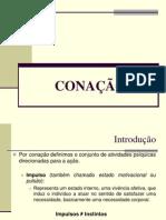 31041206 Psicologia CONACAO