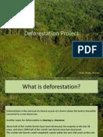 Deforestation+Project