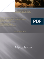 Microbiologia - Micoplasma e Ureaplasma