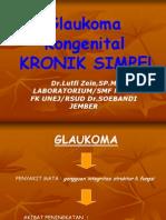 GLAUKOMA KRONIK SIMPLE
