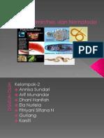 Platyhelminthes & Nematoda.pptx