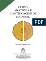 Curoso Anatomia e Identificacion de Maderas
