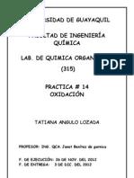 PRACTICA DE OXIDACION