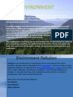 Environment & Pollution