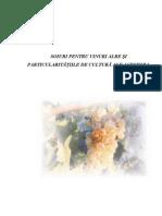 SOIURI-PENTRU-VINURI-ALBE-ŞI-PARTICULARITĂŢIILE-DE-CULTURĂ-ALE-ACESTORA