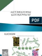 Metabolism GLICOGEN