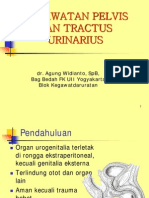 22 Dr Agung Trauma Urologi Pelvis