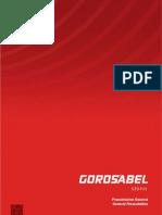 Gorosabel Stone Profile 2013