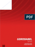 Gorosabel Group Corporate Profile 2013