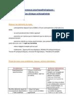 TD Processus Psychopathologiques - 07.12.2012