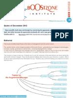 Boostzone Institute - WebReview December 2012
