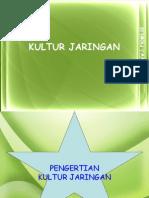 kultur_jaringan_2.ppt