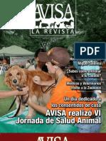 AVISA La Revista No. 11