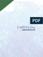 Capítulo 7 - Análisis crítico de la EIA(1)