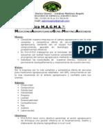 Ejemplo de Informe Geodesico M.a.G.M.A