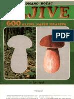 600 gljiva naših krajeva.